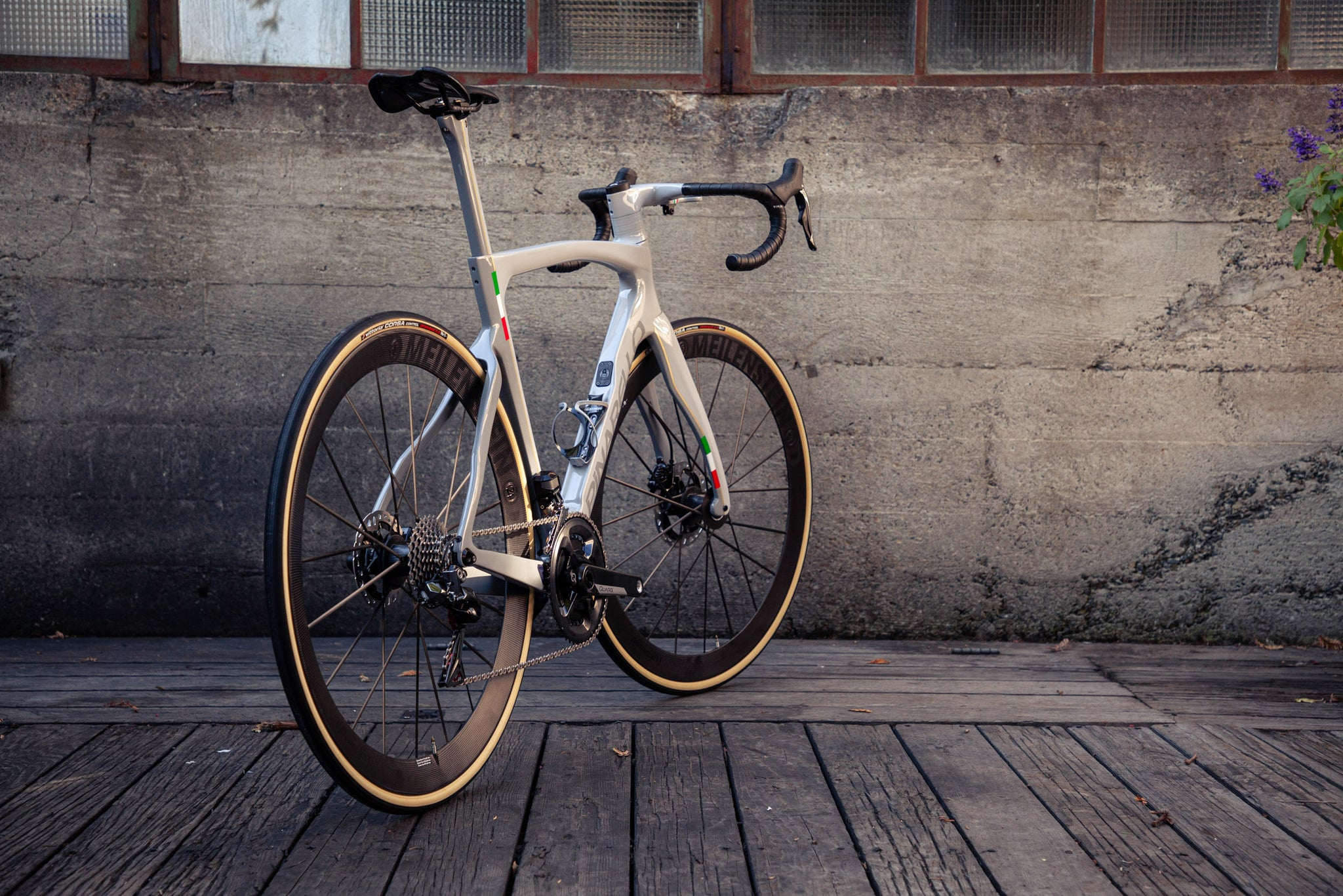 pianrello dogma f12 custom paint velocolour rear angle