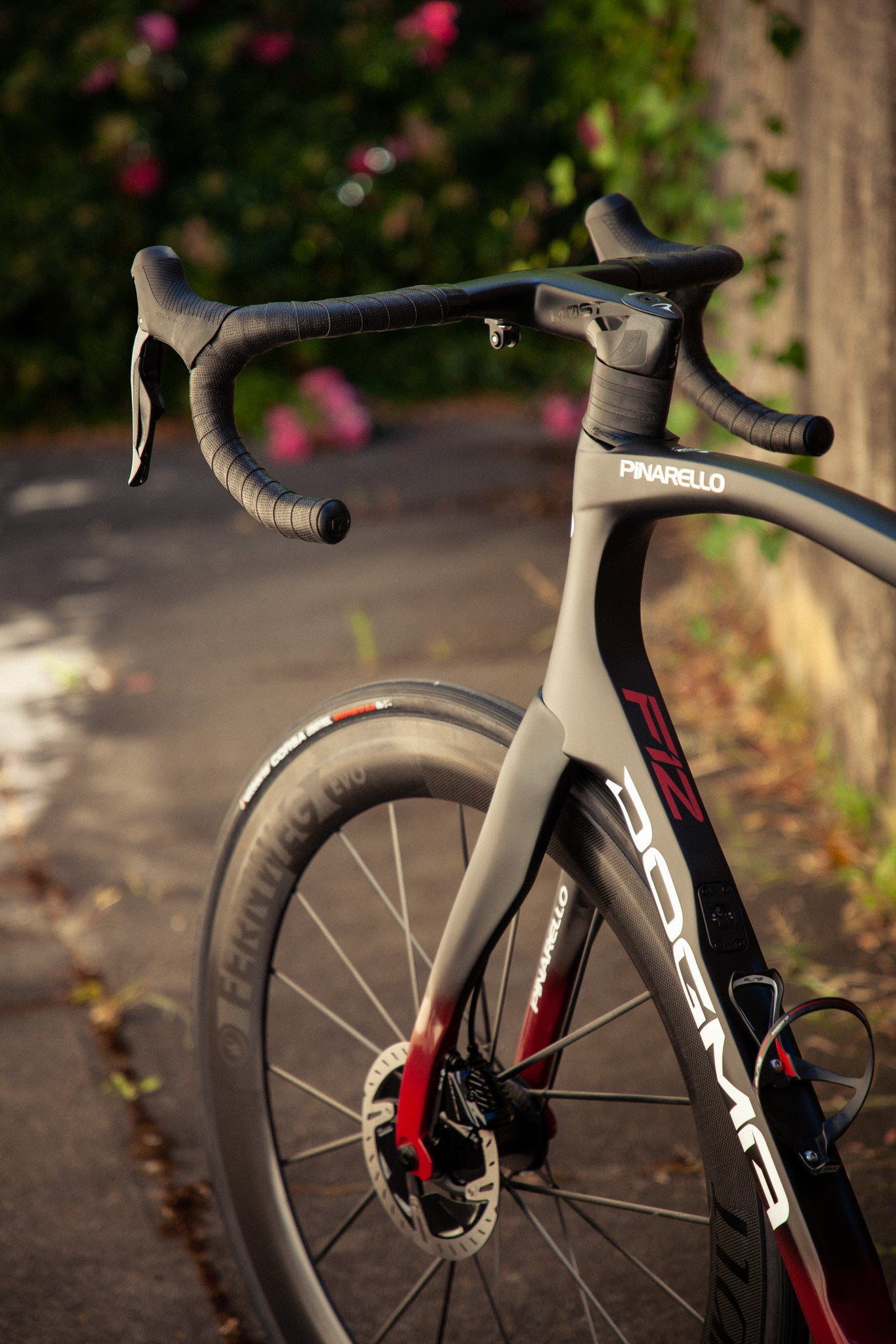 pinarello dogma f12 front end nds