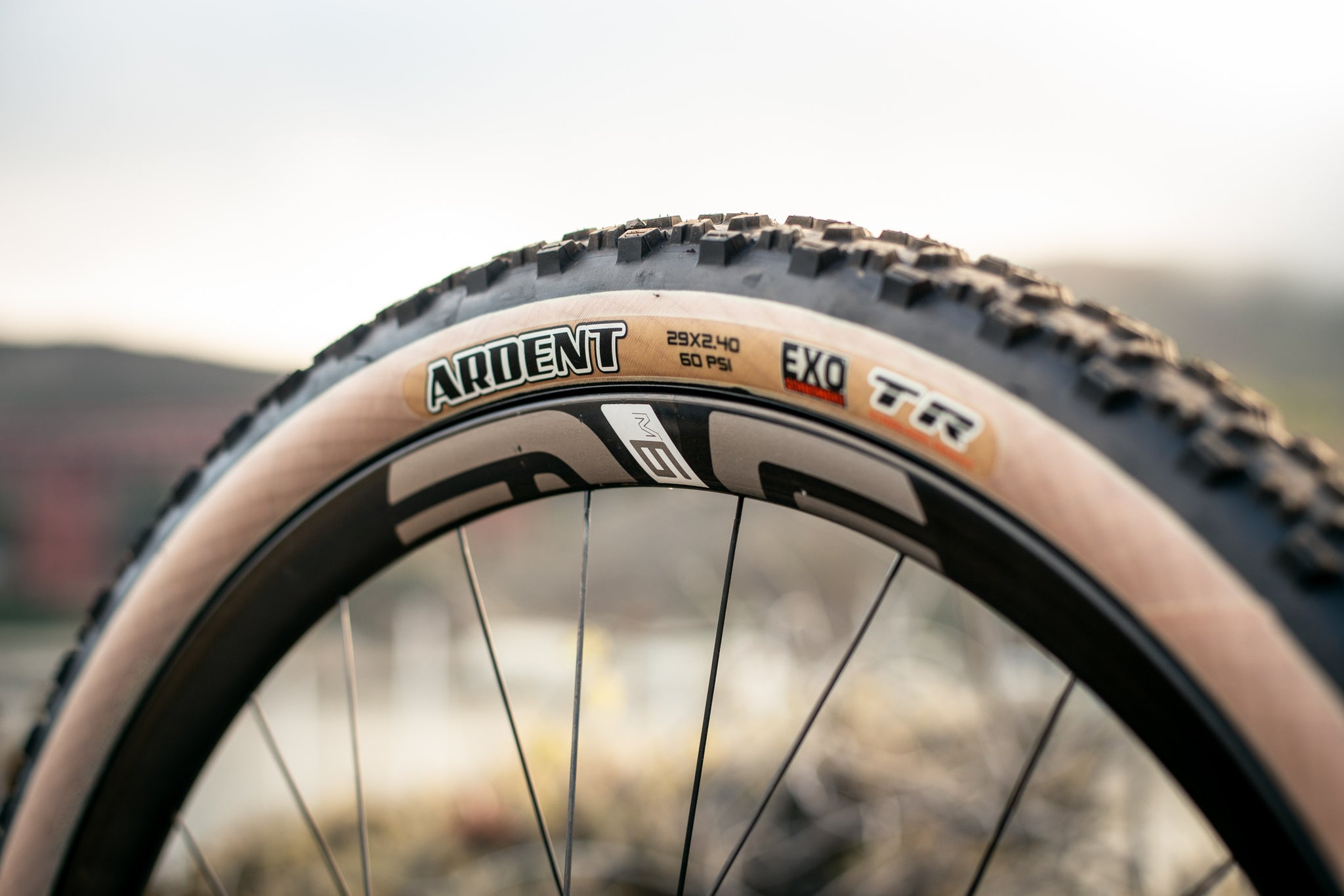 maxxis ardent tan wall 2.4