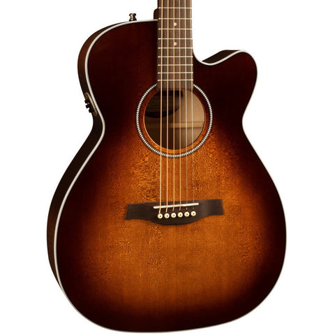 Seagull Performer CW Concert Hall QIT Burnt Umber Acoustic-Electric