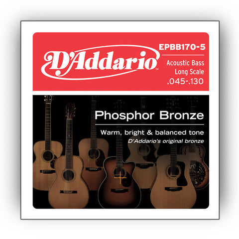 D'Addario EPBB170-5 Phosphor Bronze 5-String Acoustic Bass Long Scale 45-130