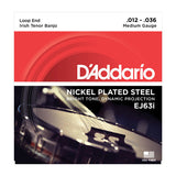 D'Addario  EJ63i Irish Tenor Banjo Nickel 12-36