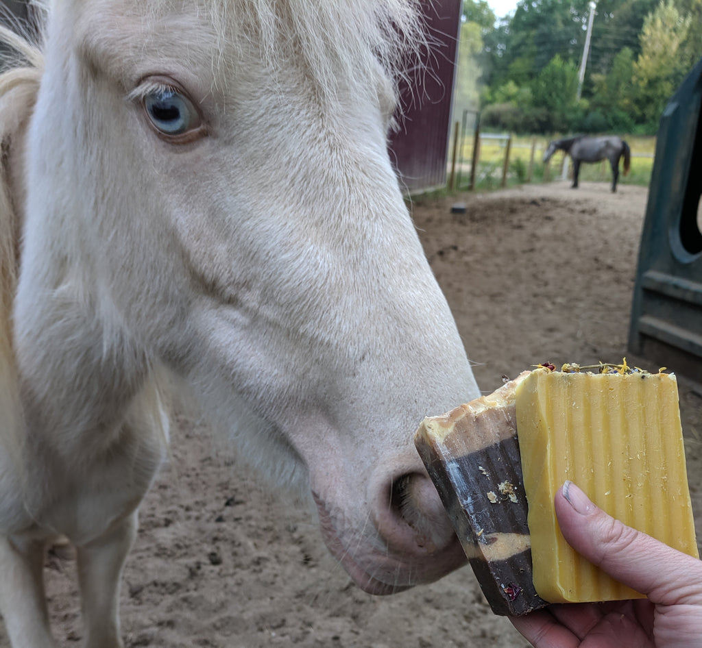 Save the Ponies with Soap!
