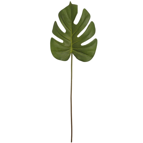 Cheese Plant Stem-Accessories-Retail Therapy Interiors