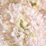 Peach Allium Hydrangea Single Stem 70cms-Accessories-Retail Therapy Interiors