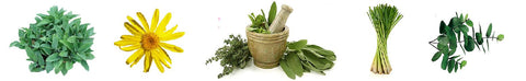 repetitive-motion-tendon-care-herbs