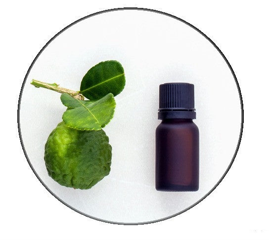 Bergamot essential Oil - Organic - Pacific Scents