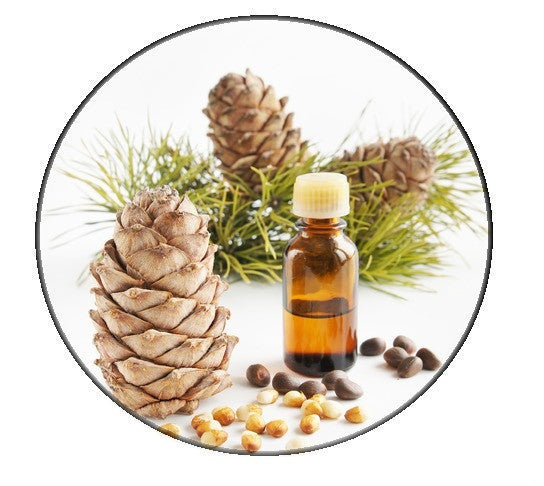 Cedarwood essential oil - Pacific Scents