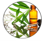 Exotic verbena essential oil - Pacific Scents