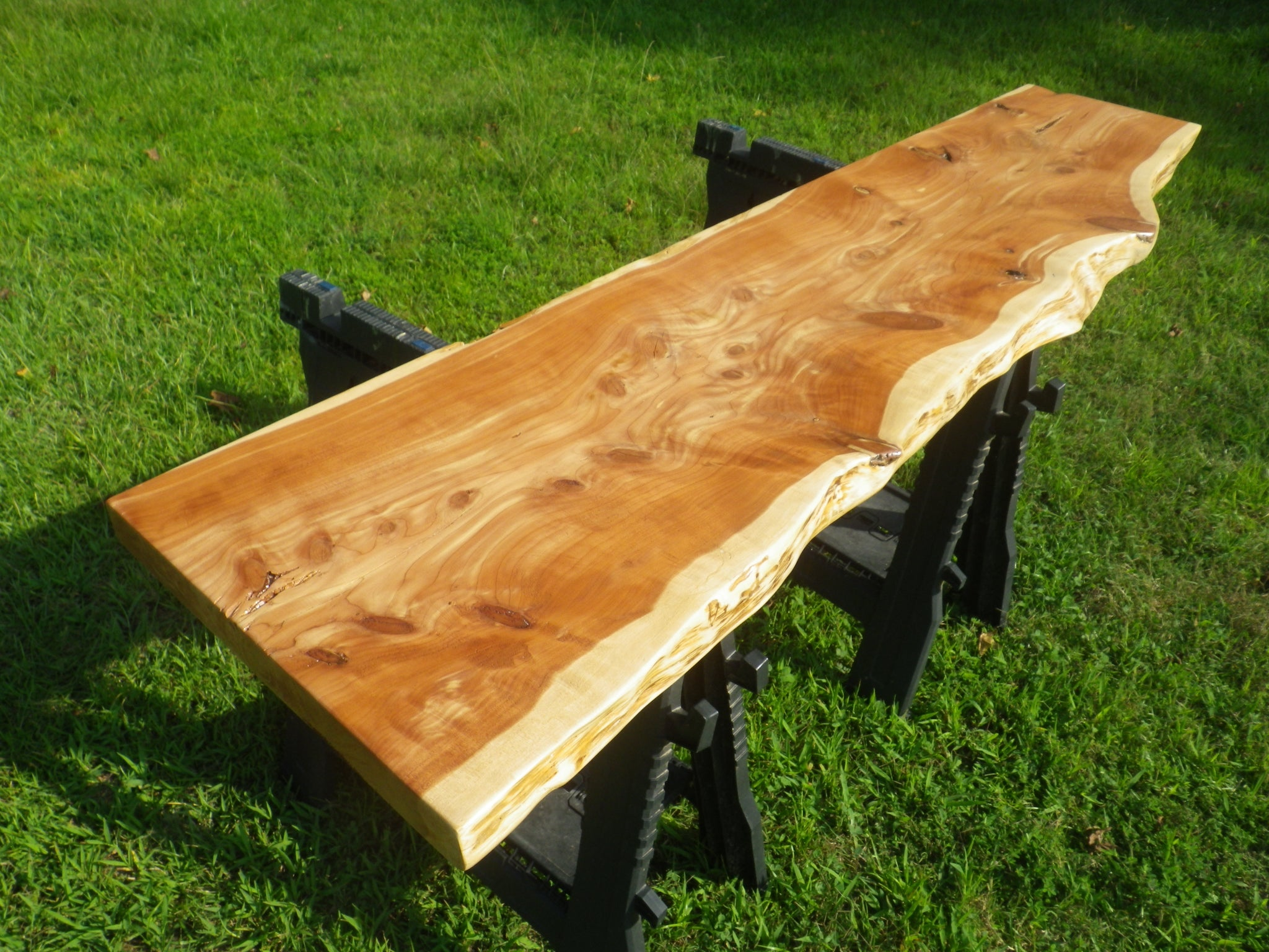 Foyer Table Top,; FINISHED Live Edge Red Cedar (Juniperus Virginiana) Wood  Slab.