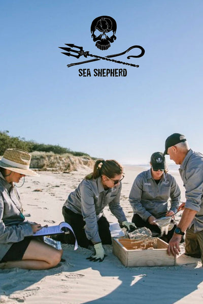 World Oceans Day 2020 | Supporting Sea Shepherd