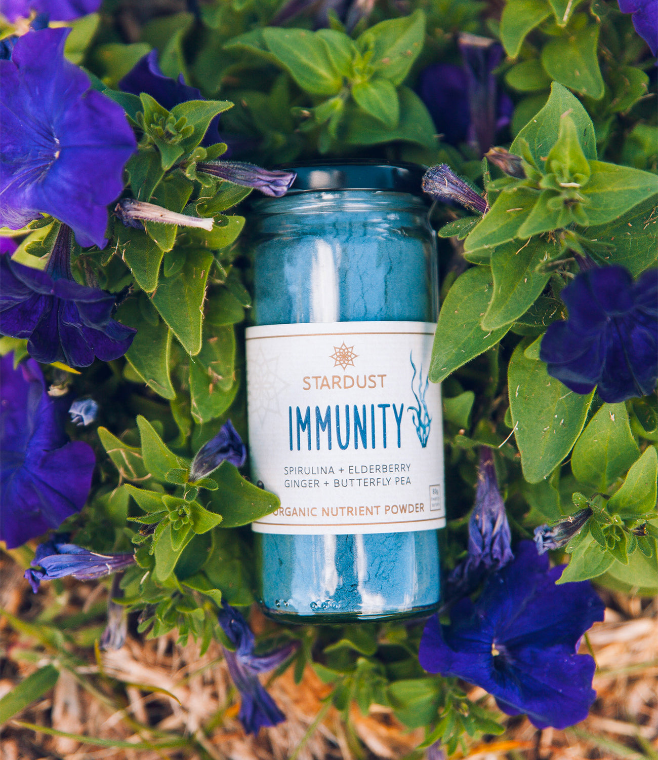 Stardust Immunity Powder from Mindful Foods on the blog at Arnhem