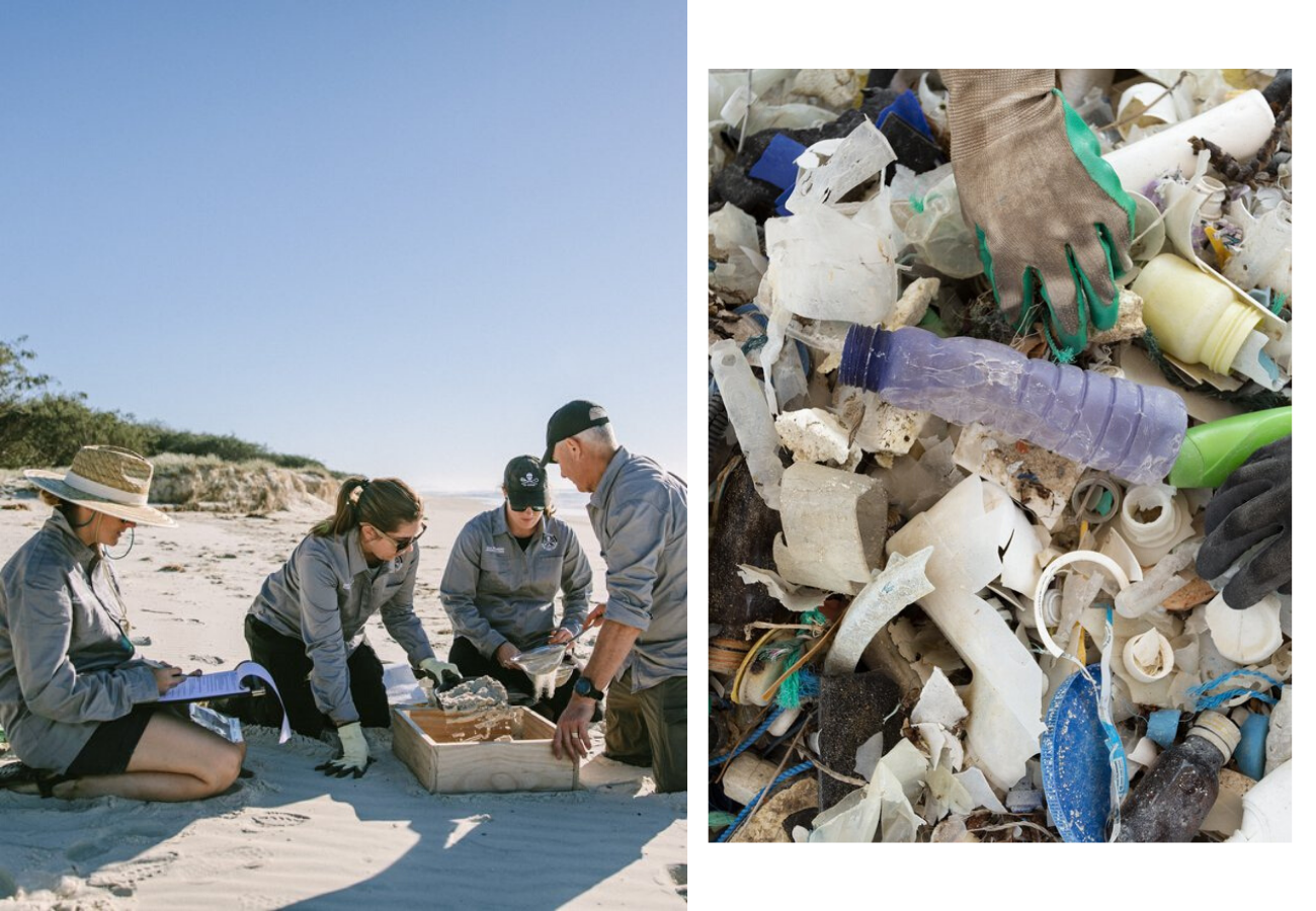 Find out how to support Sea Shepherd's Australian Marine Debris Campaign on the blog at Arnhem