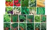 Vegetable Garden Bulk Seed Pack
