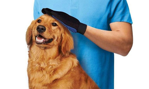 Pet Grooming - Pet Grooming Magic Hair Brush Glove