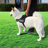 Pet Product - Adjustable Dog Harness