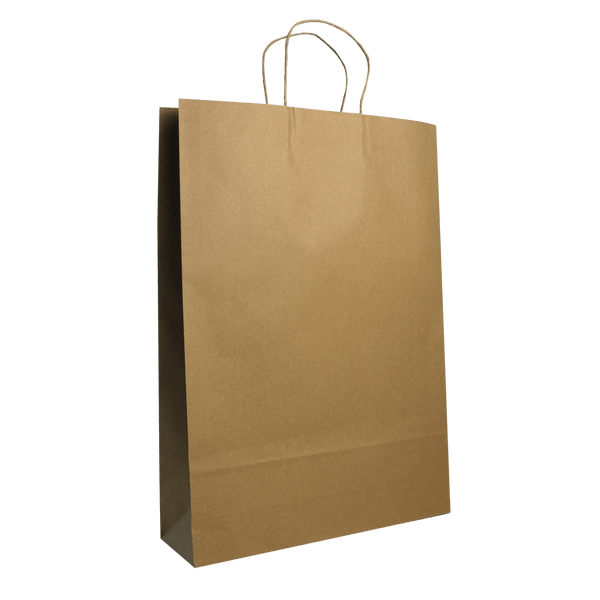 LARGE BROWN KRAFT PORTRAIT BAGS NEW SIZE - 250 UNITS