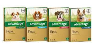 Advantage Flea Control Dogs