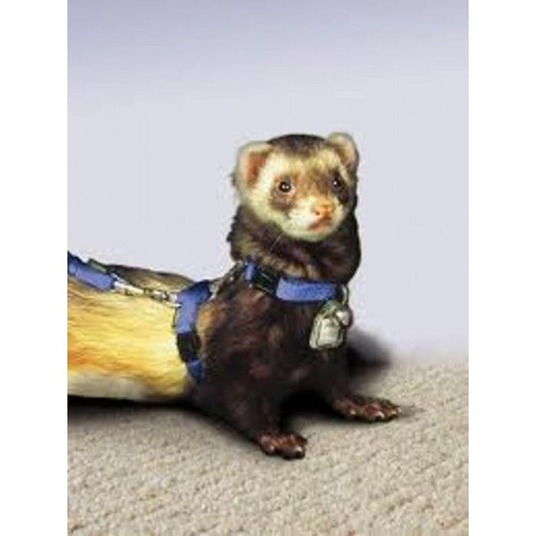 Small Animal - Ferret Harness