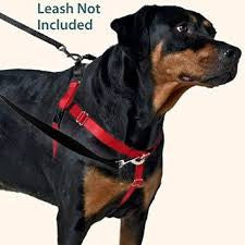 Harness - Freedom No Pull (Front attached harness)