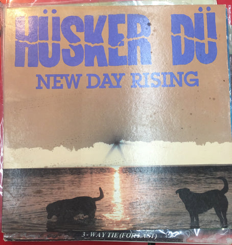Hüsker Dü ‎– New Day Rising