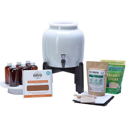 Kombucha Continuous Brewing System - Basic Edition