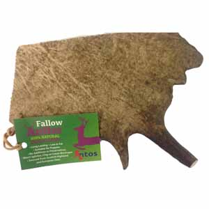 Antos Fallow Antler - Medium - Lucky Paws Boutique
