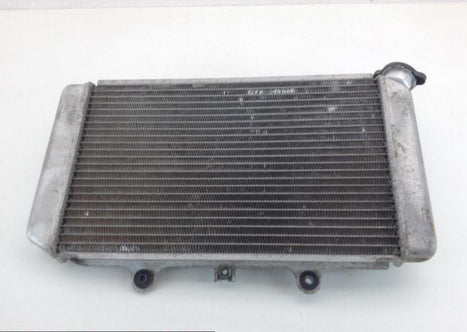 Yamaha 660 Grizzly Engine Radiator Cooling 2004 1136A
