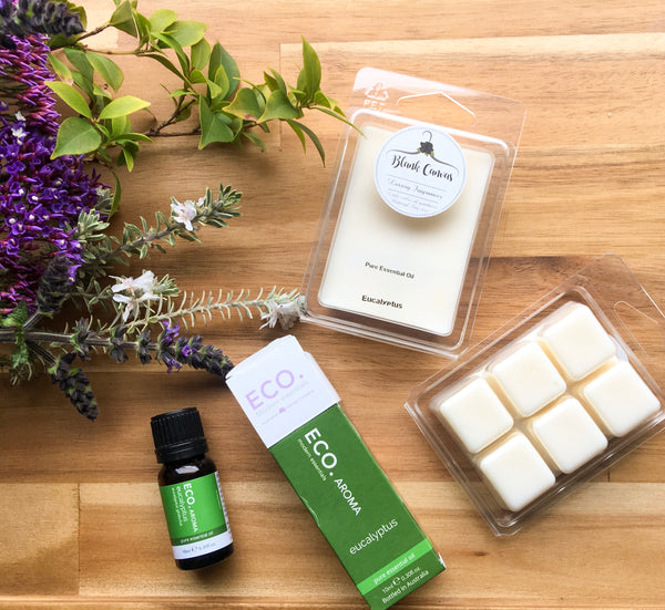 Soy Melt- Eucalyptus (Essential Oil)