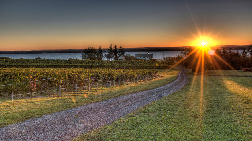 Finger Lakes Vineyards - Tour de Force Wines