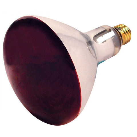 BULBRITE 714125 250BR40HR Red Heat Lamp