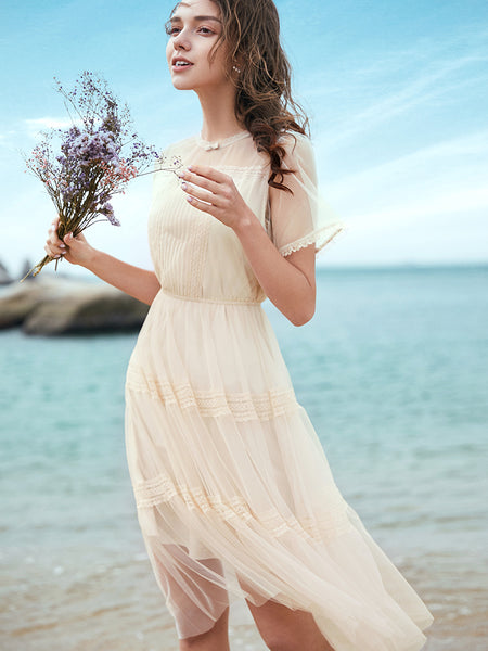 2 Colors See-Through Tulle Dress