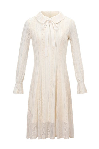 Fleece Lining Dolly Collar Lace Dress