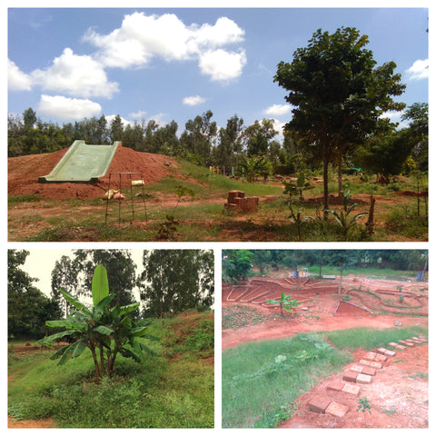 Red Soil Landscape