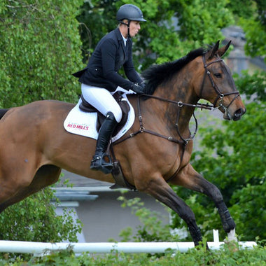 Meet International Show Jumper Holly Smith