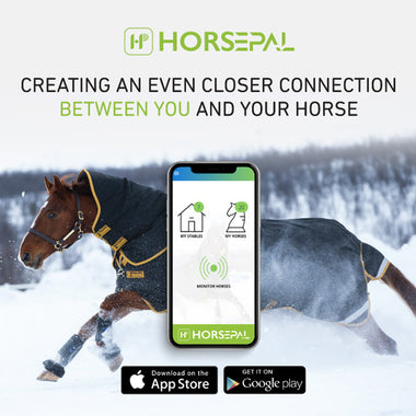 Horsepal - Create A Closer Connection To Your Horse