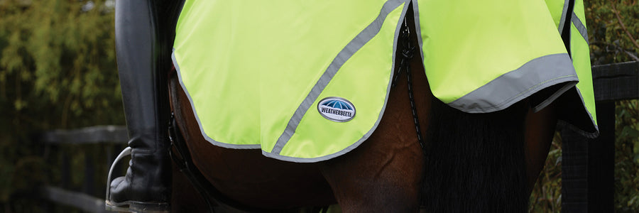 Reflective Safety Wear for Horses