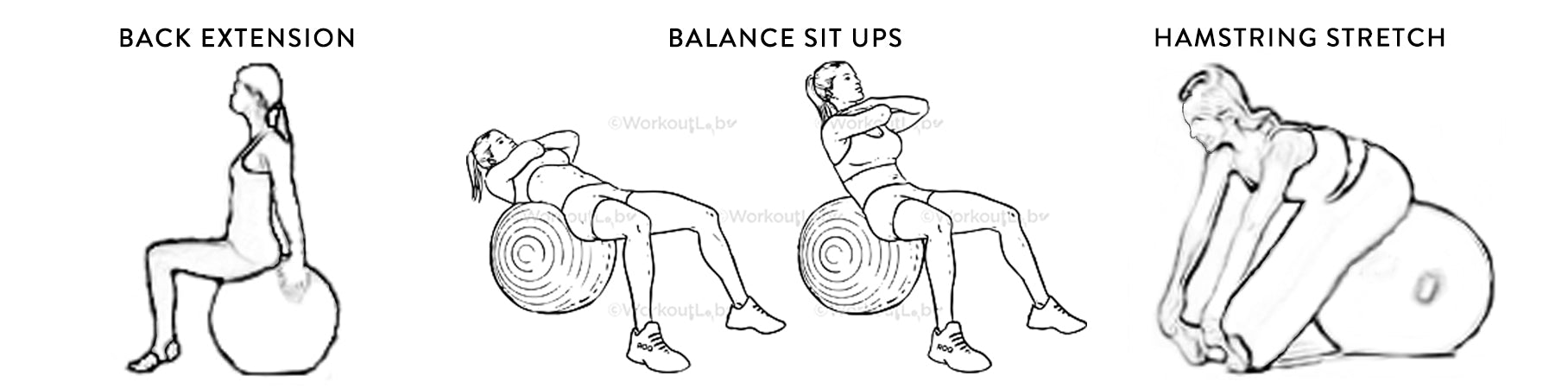 Stability ball exercises for equestrian fitness stability ball exercises for horse rider fitness balance ball exercises for equestrian fitness balance ball exercises for horse rider fitness back extension balanced sit ups balanced hamstring stretch workout labs