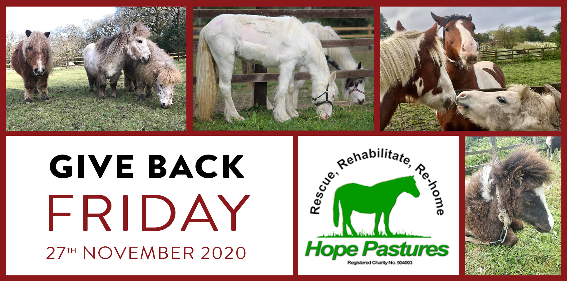 Give Back Friday for Hope Pastures