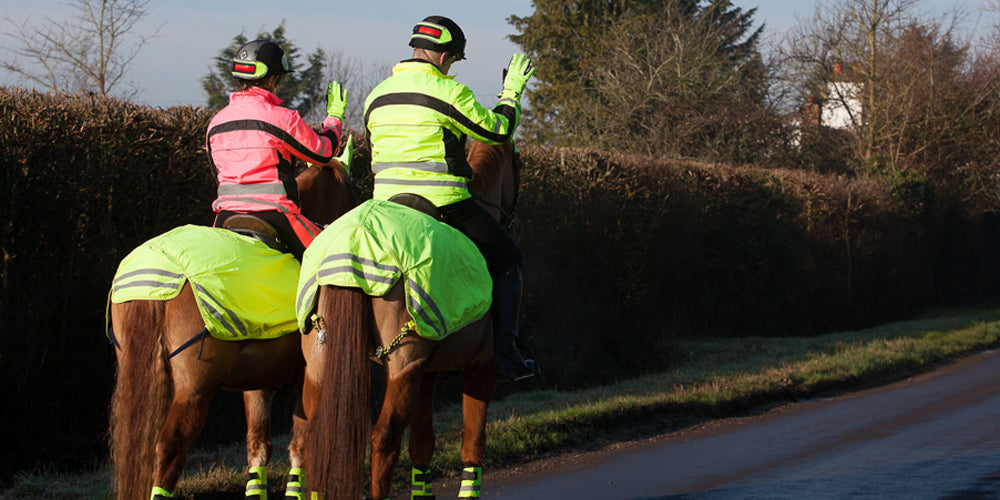 Highway code for horses blog