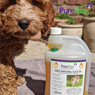 PureFlax Competition