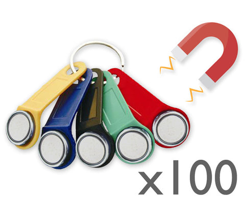100x Magnetic Dallas key fob (iButton)