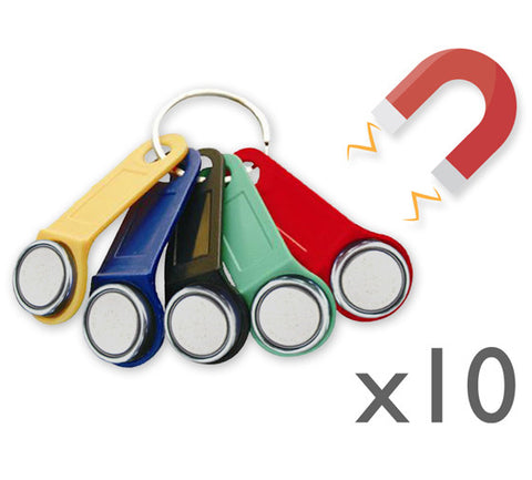10x Magnetic Dallas key fob (iButton)