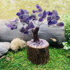 Feng Shui Gemstone Tree - Amethyst