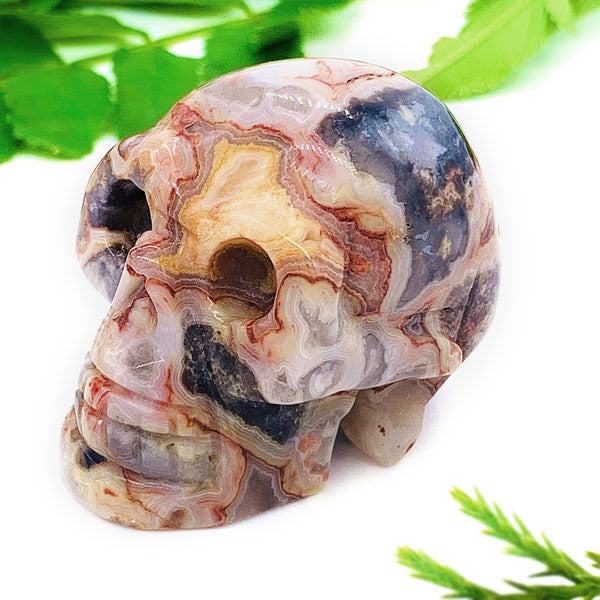 "Crystal Skull - Crazy Lace Agate Crystal Skull (1.5"")"