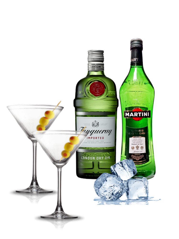 Cocktail Combo - Dry Martini (Serves 10)