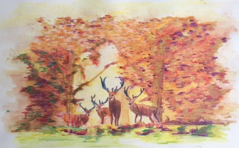 Original Watercolour-pencil Deer at Daybreak - signed by the Artist Neil Morrison
