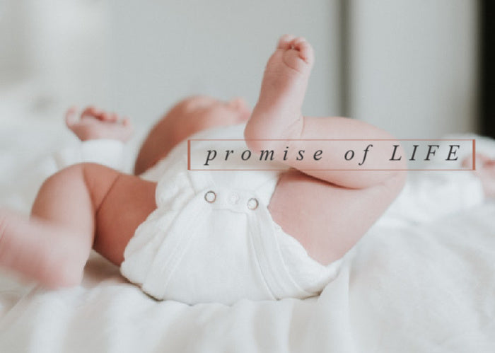 Promise Of Life | May Monthly Blog