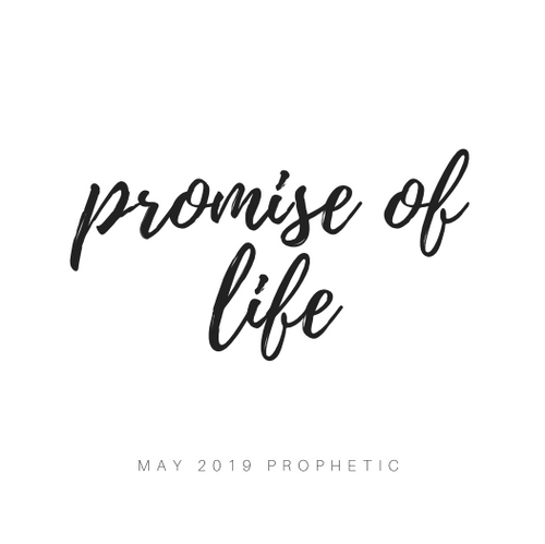 "May ""Promise of Life"" 5-Charm Necklace"
