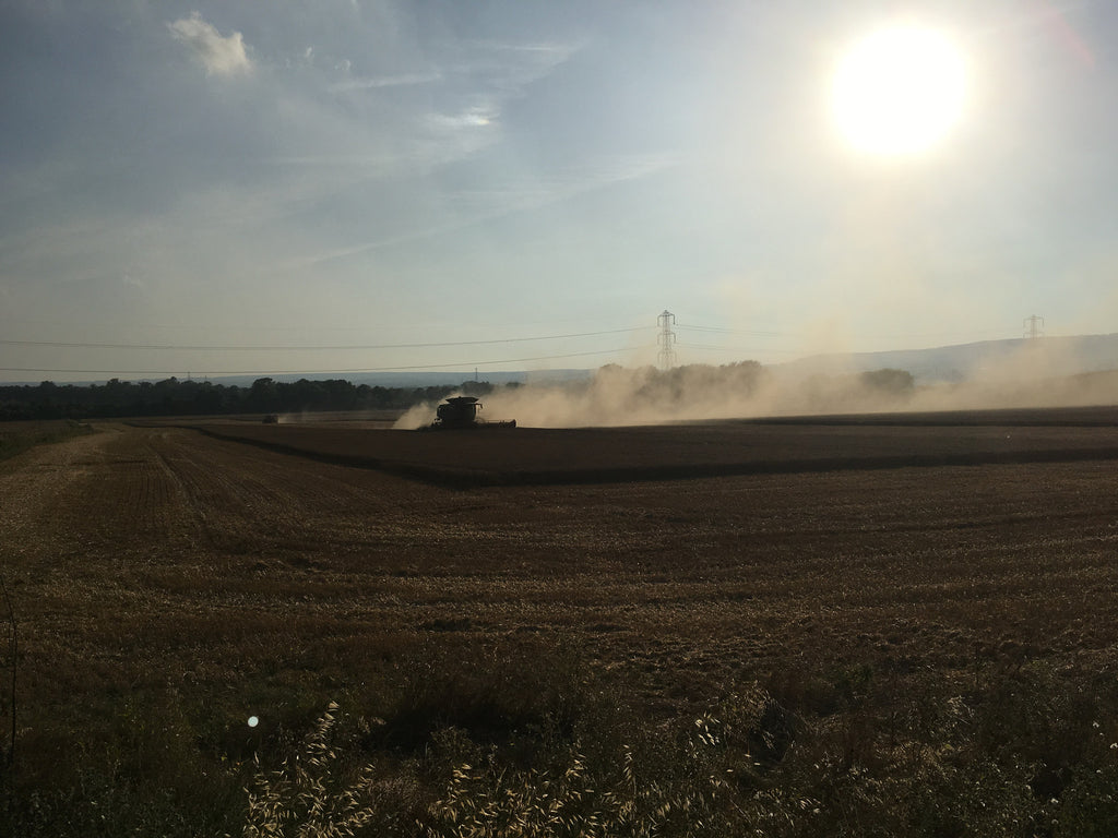 Combine harvester is a dusty delight